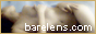 BareLens.com
